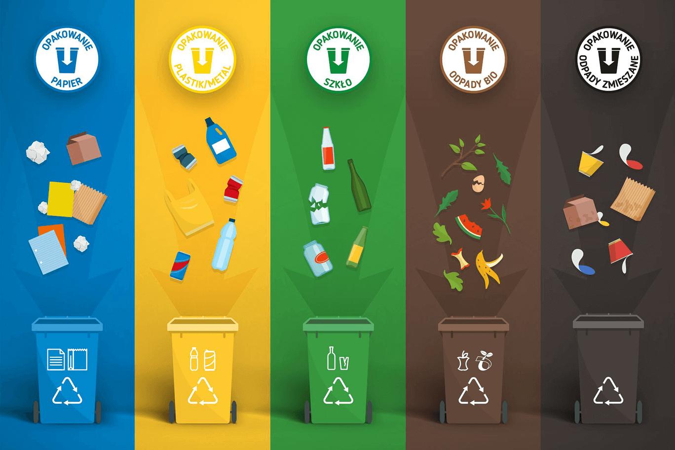 Biedronkowa Segrega(k)cja – naucz się segregować śmieci